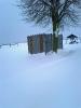 Impressionen des Winters_2